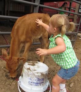 Johanna with calf